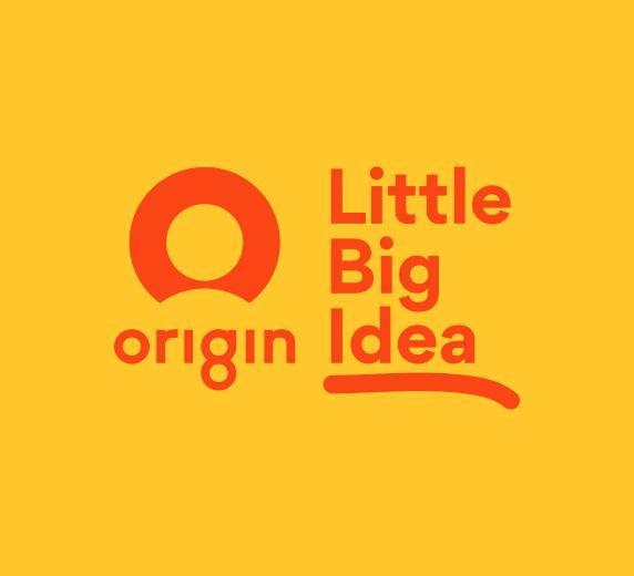 Origin Energy Little Big Idea 2020